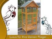 Grande Volière extérieure pour oiseau Cage élevage en bois