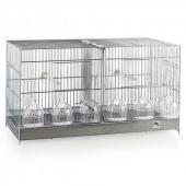 Cage oiseaux concours - 60x26x38cm