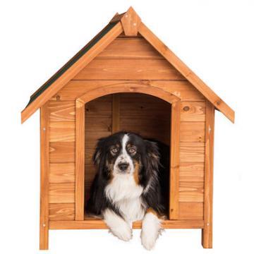 Niche pour chiens - niche chien - cabane pour chien